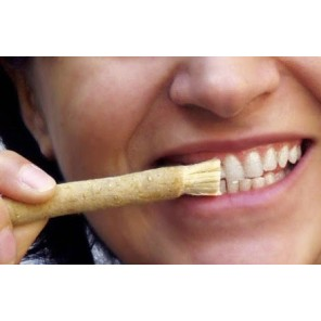 Miswak - Escova de Dente 100% Natural